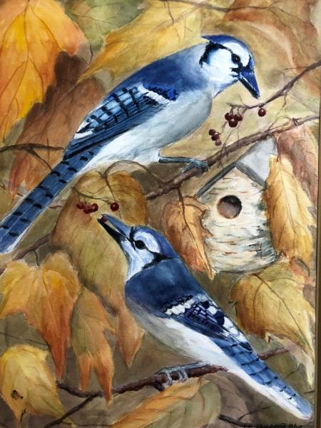 Blue Jays in Autumn