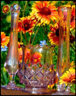 Refracting Garden Flowers