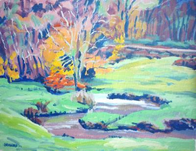 The Woolleigh Brook near Great Torrington