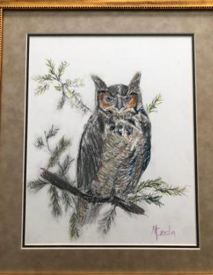 Elusive Owl