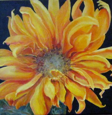 Seductive Sunflower III