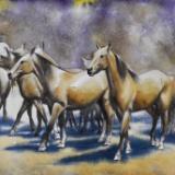 Dance of horses 2, 38cm x 56cm, 2020
