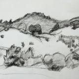 Bear Creek Reservoir Hillside