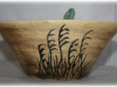 Wheat Grass Bowl