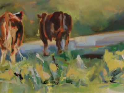 Sicilian bulls