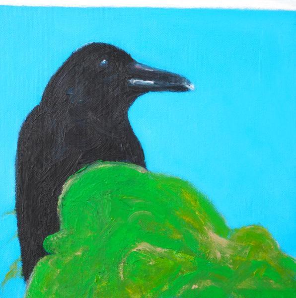 """""""Crow"""" 2019"""