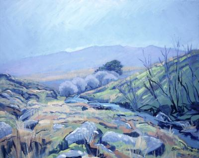 At Black-a-ven Brook, Dartmoor