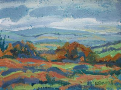 Autumn in the Quantock Hills, Somerset