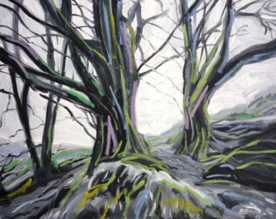 Beech trees in winter, Exmoor