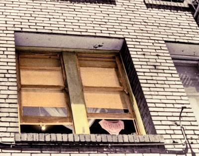 Panties in the Window