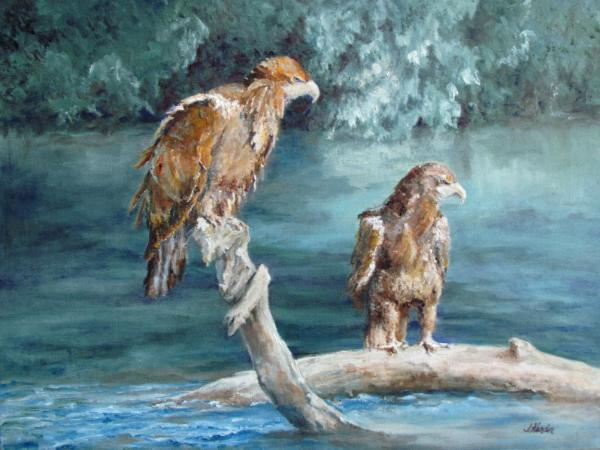The Sunbathers, Juvenile Eagles