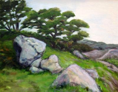 Boulders on a Hill