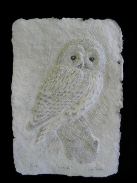 Cast Paper Sculpture Jan Fitch Art In Wood