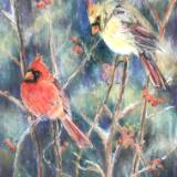 January cardinals on Berry Bushes