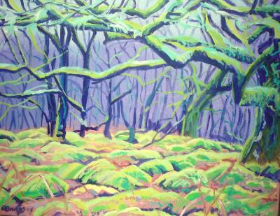 A Dartmoor woodland below Black Hill