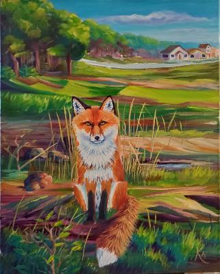 Red Fox Terrain