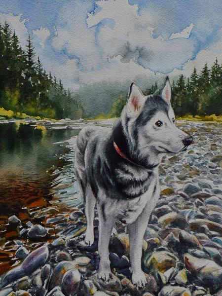 Custom portrait of a Husky, 38cm x 28cm, 2020