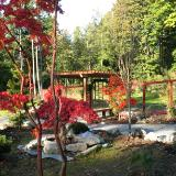 view of garden and arbor from studio