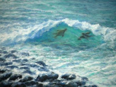 Kauai Lawai Turtles