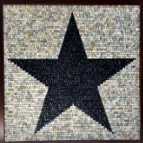Star of Texas Edition 1 (2021)