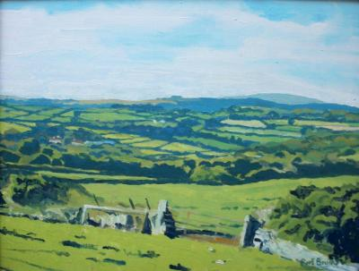 Dartmoor view near Jurston and Chagford