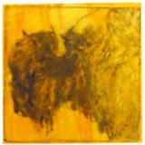 Bison Head (Yellowstone series)
