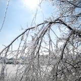 Indiana Ice Storm