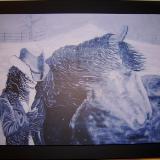 Navar's Storm (print on wooden board)