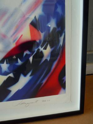 """James Rosenquist """"Stars and Stripes at the Speed of Light"""" 2010, Detail"""