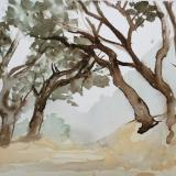 Watercolor - Places