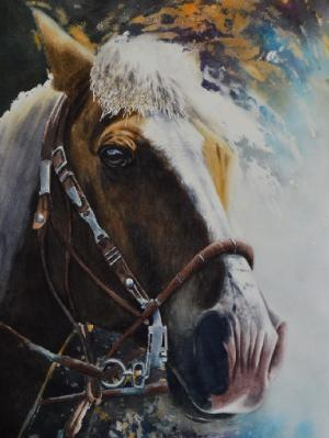 The beauty of the Peruvian Paso Horse, 38cm x 56cm, 2019