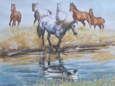 Western horse scene, 35cm x 45cm, 2017