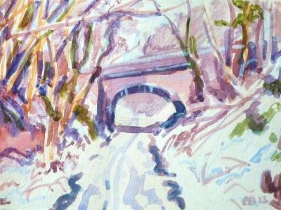 Snow on the Tarka Trail