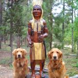 * Totems & Cigar Store Indian *