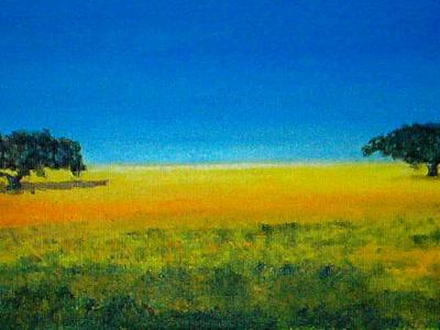 Fields of Alentejo