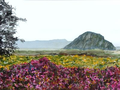 Morro Rock with flowers