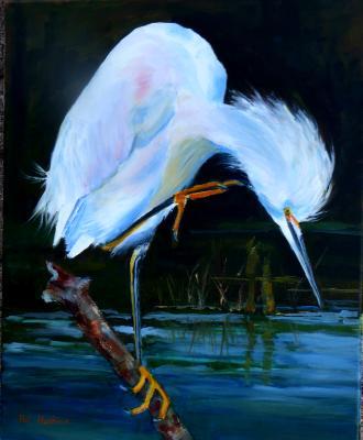 Snowy Egret - oil - 16x20 sold