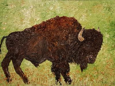 Buffalo (Sold)