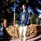 Blue Dragon walking stick