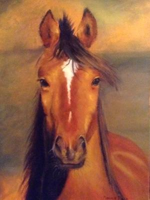 Horse head front view 12x18 hardboard in pastels