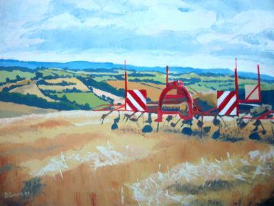 Farmland near Copplestone, Mid Devon