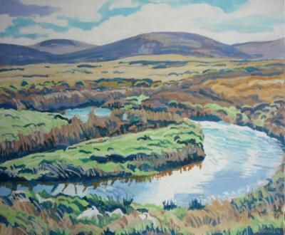 The upper river Taw, Dartmoor