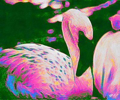 Flamingo pop art