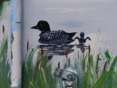 close up of loon and duckling
