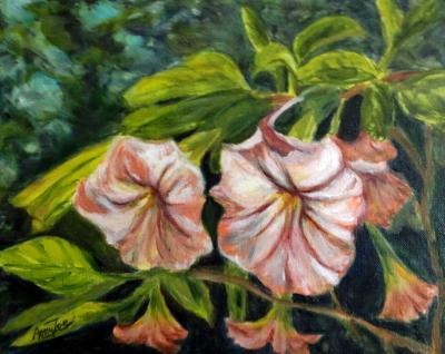 """Trumpet Flowers"""