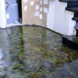 Stained concrete foyer leading to stairs