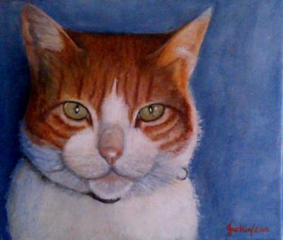 Diannes cat