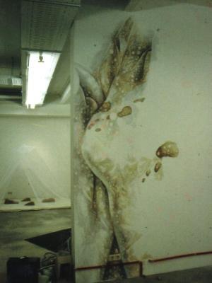 """""""Ein Lichtbildprojekt"""" at art agents gallery in Hamburg 2001"""