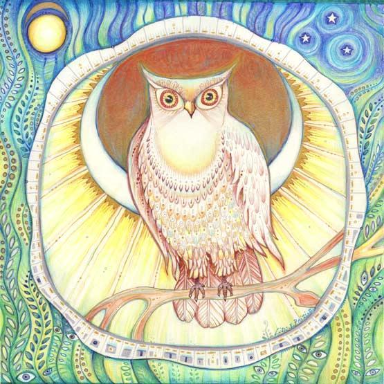 Moon Owl art print from the original drawing by Liza Paizis