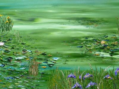 Pond behind Murphy's